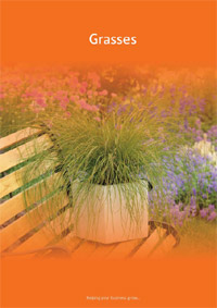 Click to download - Grasses